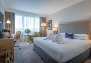 Executive_Bedroom